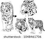 vector drawings sketches... | Shutterstock .eps vector #1048461706