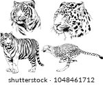 vector drawings sketches... | Shutterstock .eps vector #1048461712