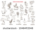 varicose vein herbal remedies....   Shutterstock .eps vector #1048492048
