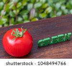 tomato fruit with 'green' words ... | Shutterstock . vector #1048494766