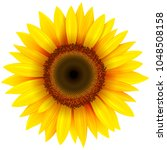 sunflower flower isolated ... | Shutterstock .eps vector #1048508158