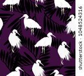 pelican   illustration | Shutterstock .eps vector #1048524316