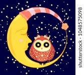 cute cartoon sleeping owl in... | Shutterstock . vector #1048575098