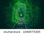 Tunnel Of Love  Green Trees An...