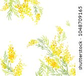 yellow mimosa  flowers of... | Shutterstock .eps vector #1048709165