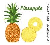 vector pineapple isolated on... | Shutterstock .eps vector #1048719452