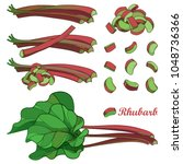 vector set with outline rhubarb ... | Shutterstock .eps vector #1048736366