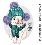 vector pig with blue knitted... | Shutterstock .eps vector #1048770425