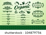 organic frame and fillet set... | Shutterstock .eps vector #104879756