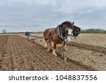 Small photo of Wingfield, UK - April 4, 2015: Draught horses pull a plough through a field. Horses were traditionally used in ploughing before the large scale mechanisation of farming during industralisation.