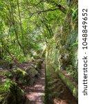 walking alona a levada in... | Shutterstock . vector #1048849652