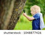 charming kid exploring nature... | Shutterstock . vector #1048877426