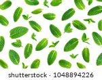 fresh mint isolated on white.... | Shutterstock . vector #1048894226
