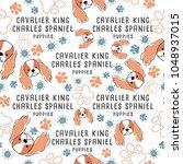 cavalier king charles spaniel   ... | Shutterstock .eps vector #1048937015
