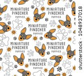 miniature pinscher   dog breed... | Shutterstock .eps vector #1048937018
