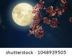 romantic night scene  ... | Shutterstock . vector #1048939505