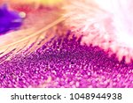 soft feather with sparkles with ... | Shutterstock . vector #1048944938