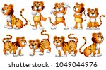tigers in different actions on... | Shutterstock .eps vector #1049044976