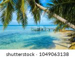 tobacco caye   relaxing on... | Shutterstock . vector #1049063138