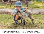 Small Cute Boy Is Feeding A...