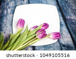 purple tulip bouquet and plate... | Shutterstock . vector #1049105516