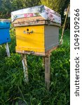 hives in an apiary with bees... | Shutterstock . vector #1049109266