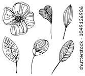 hand drawn hibiscus. vector... | Shutterstock .eps vector #1049126906