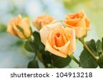 Beautiful Bouquet Of Roses On...