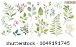Stock vector vector big set botanic elements wildflowers herbs leaf collection garden and wild foliage 1049191745