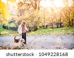 Stock photo an elderly woman with dog on a walk in autumn nature 1049228168