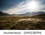 landscape view along... | Shutterstock . vector #1049238596