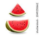 watermelon realistic icon... | Shutterstock .eps vector #1049250662