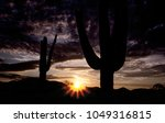 tall saguaro cactus silhouetted ... | Shutterstock . vector #1049316815
