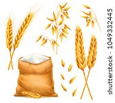 realistic bunch of wheat  oats... | Shutterstock .eps vector #1049332445