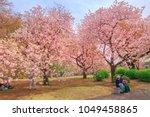 tokyo  japan   april 17  2017 ...   Shutterstock . vector #1049458865