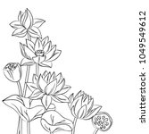 vector contour lotus lily... | Shutterstock .eps vector #1049549612