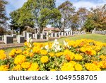 titanic cemetery. place in the... | Shutterstock . vector #1049558705