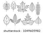 vector illustration set of... | Shutterstock .eps vector #1049605982