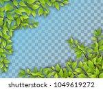 set of realistic vector tree... | Shutterstock .eps vector #1049619272