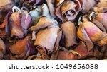 closeup shot at a group of... | Shutterstock . vector #1049656088