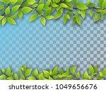 set of realistic vector tree... | Shutterstock .eps vector #1049656676
