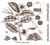 vector collection of hand drawn ... | Shutterstock .eps vector #1049668166