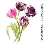 watercolor tulips flowers.... | Shutterstock . vector #1049722892