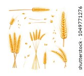 wheat  bunch  grain and dried... | Shutterstock .eps vector #1049771276