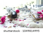 sage with pink flowers and... | Shutterstock . vector #1049814995