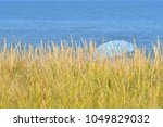 Small photo of Beach Umbrella beyond the Grass Abstract