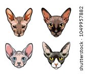 Sphinx Cats Set. Collection Of...