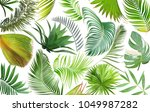 tropical green palm leaf on... | Shutterstock . vector #1049987282