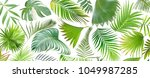 tropical green palm leaf on... | Shutterstock . vector #1049987285