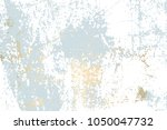 abstract grunge pattina effect... | Shutterstock .eps vector #1050047732